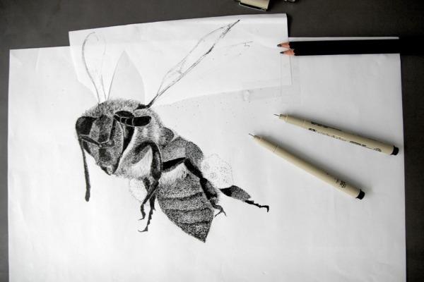 esquisse abeille